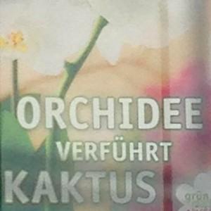 Orchidee verführt Kaktus