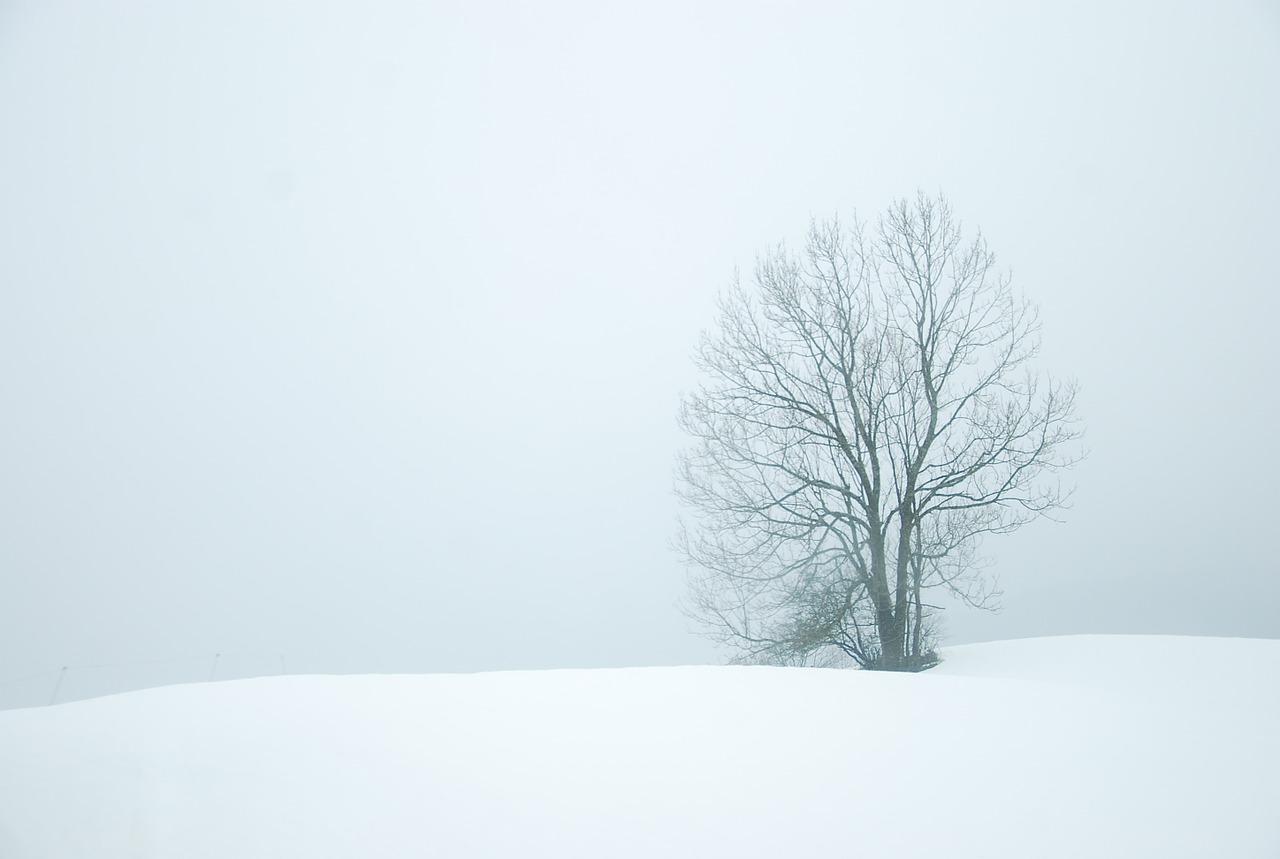 Wie Introvertierte Weihnachten bestehen